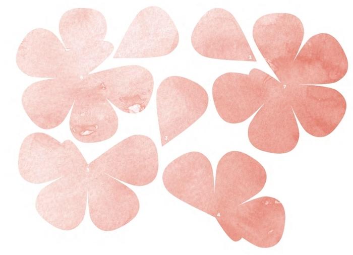 Трафареты лепестков роз