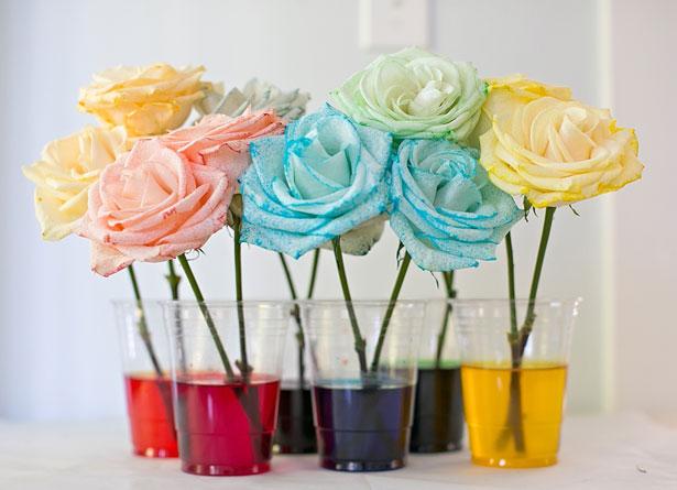 Как окрасить розы в яркие цвета