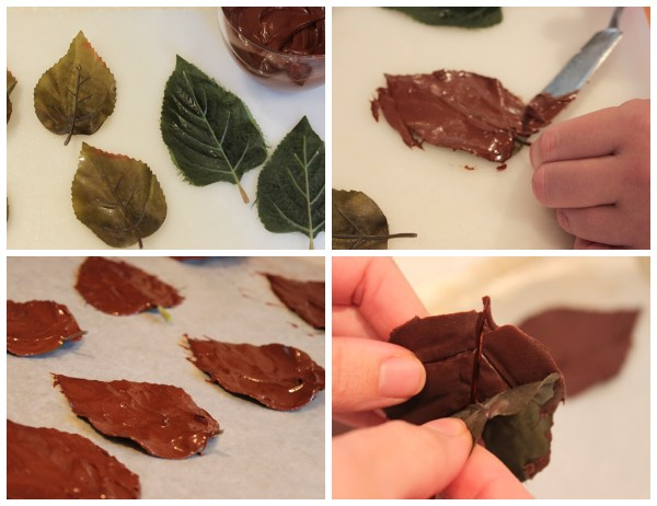 Как сделать листья из шоколада