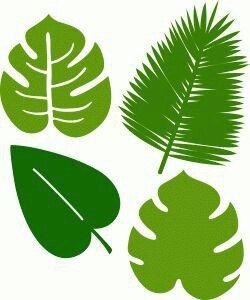 Шаблоны тропических листьев