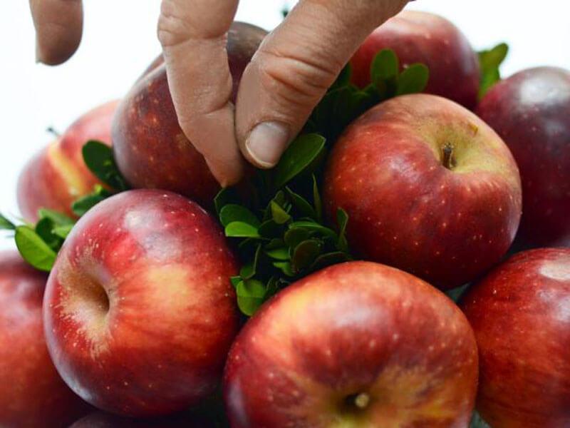Как сделать букет из фруктов