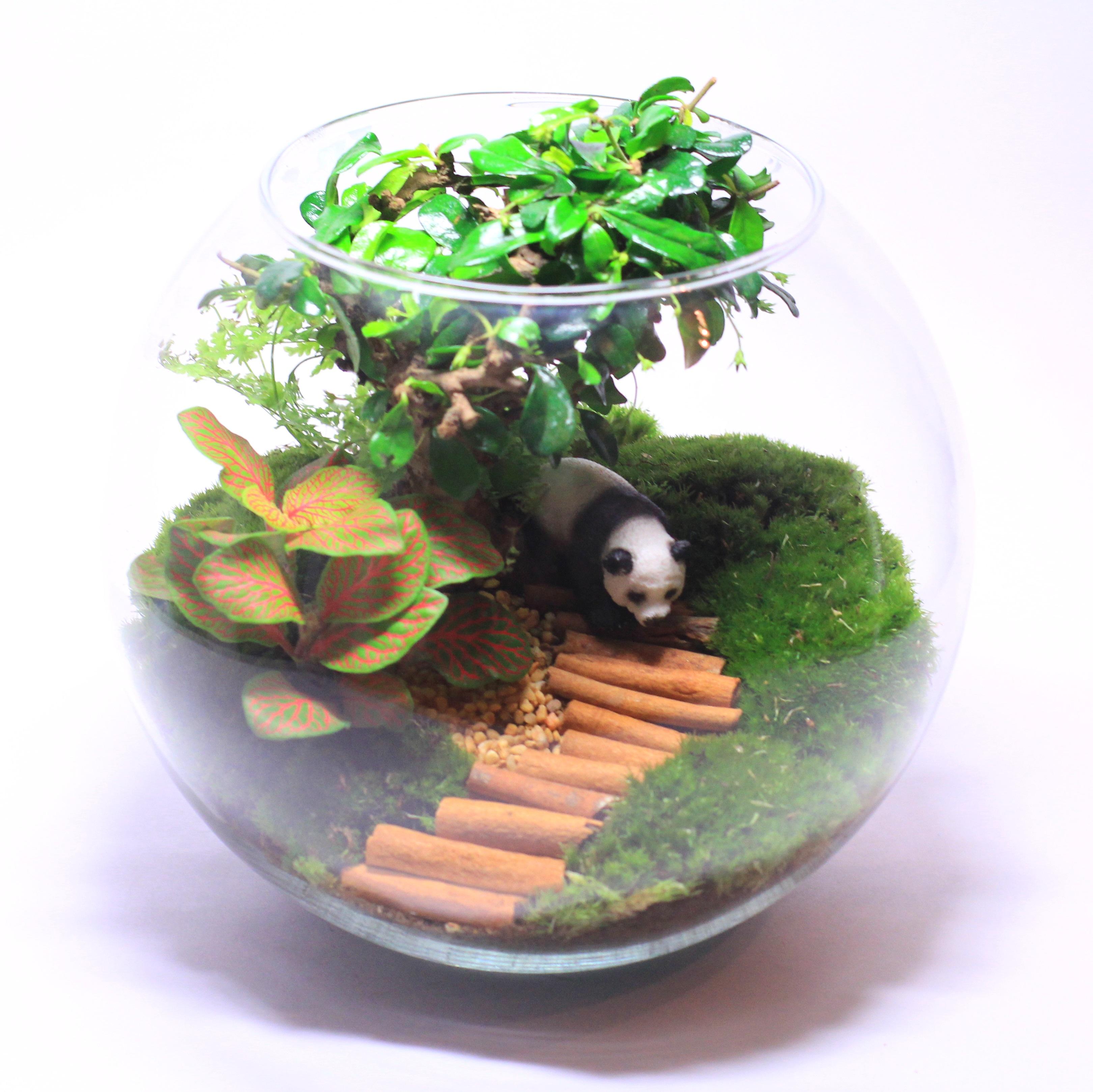 Флорариум с искусственными растениями